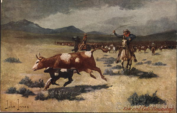 Cow and Calf Round-Up John Innes Cowboy Western
