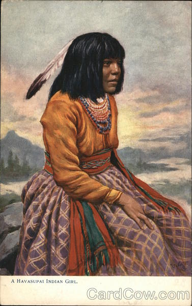 An Indian Woman Sitting on a Rock Native Americana