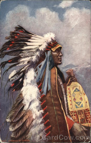 Indian with Long Feather Train Native Americana