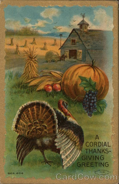 Picture of a Turkey and an Pumpkin