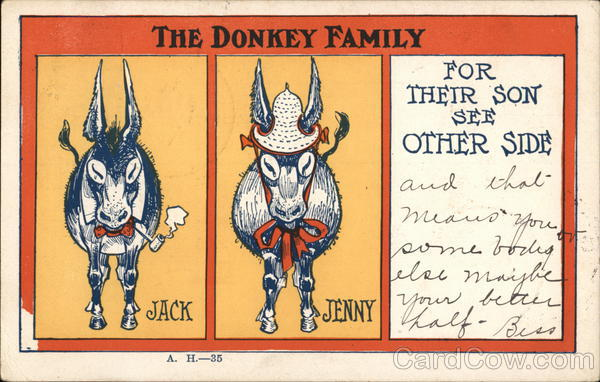 The Donkey Family -Jack, Jenny, For Their Son See Other Side