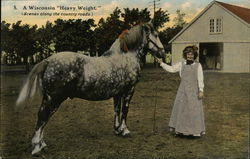 A Women and her Horse