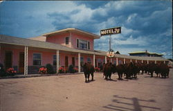 Motel 20, On Highway 20 & 140