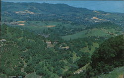Aerial View of Beautiful Contra Costa Hills in the Spring