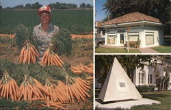 """Carrot Capital of the World"""
