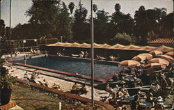Swimming Pool at Beverly Hills Hotel