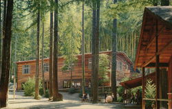 Alliance Redwoods, Christian Camp & Conference Center