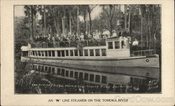 An N Line Steamer on the Takoma River Steamers