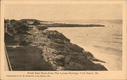 North East Shore from The Lyman-Hastings