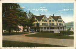 Maple Villa Hotel Postcard