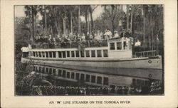 "An ""N"" Line Steamer on the Takoma River"