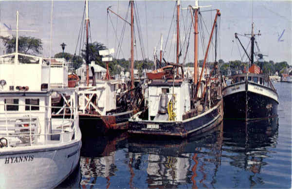 Commercial Fishing Fleet, Hyannis Harbor Cape Cod Massachusetts