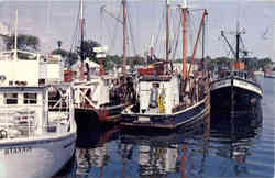 Commercial Fishing Fleet, Hyannis Harbor