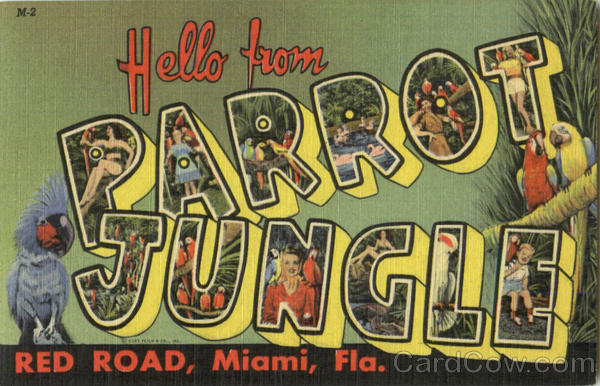 Hello From Parrot Jungle, Red Road Miami Florida Large Letter