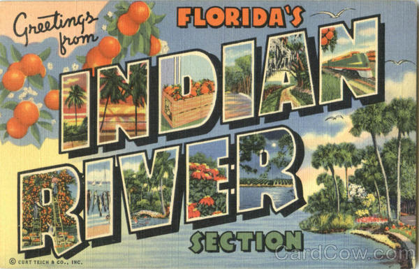 Greetings From Florida's Indian River Section Large Letter
