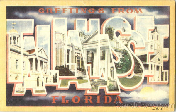 Greetings From Tallahassee Florida Large Letter