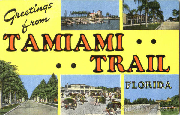 Greetings From Tamiami Trail Florida Large Letter