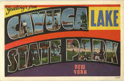 Greetings From Cayuga Lake State Park Postcard