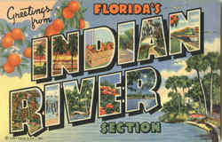 Greetings From Florida's Indian River Section