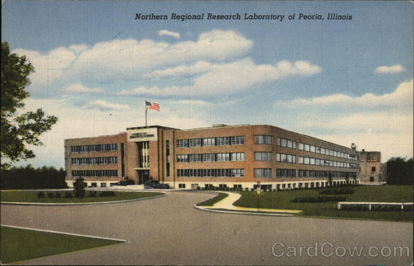 Northern Regional Research Laboratory Peoria Illinois