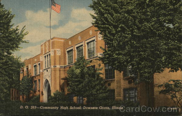 Community High School Downers Grove Illinois
