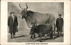 Lone Star and Georgia