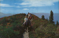 Horseback Riders High in the Great Smoky Mountains National Park