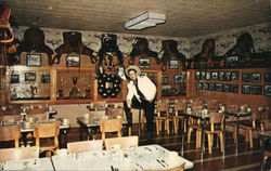 Casey Tibbs Trophy Room, Falcon Cafe Postcard