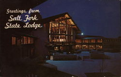 Salt Fork State Lodge