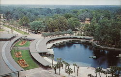 A Bird's Eye View of Florida's Silver Springs
