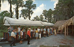 Weeki Wachee's Covered Wagon Train