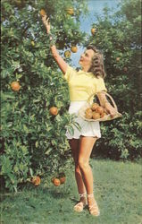 Girl Picking Oranges
