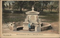 Edmund's Well, Druid Hill