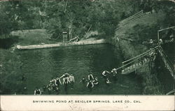 Swimming Pond at Seigler Springs Postcard