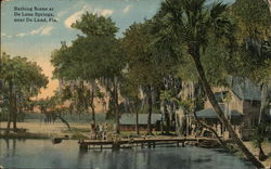Bathing Scene at DeLeon Springs