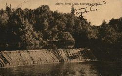 View of Mary's River Dam