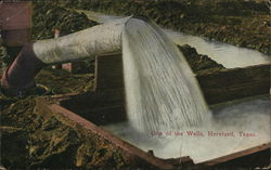 One of the Wells Postcard