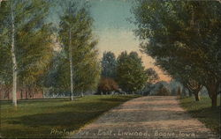 Phelan Ave, East, Linwood