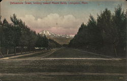 Yellowstone Street Looking Toward Mount Baldy