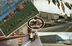 Gold Seal Vineyards, Keuka Lake Postcard
