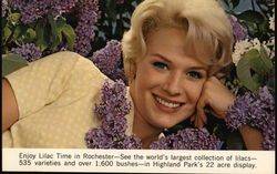 Enjoy Lilac Time in Rochester