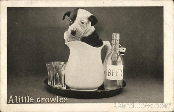 A Little Growler Dogs Drinking
