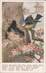 Bird Discovers Baby Cupid Asleep In Its nest In Tree Postcard