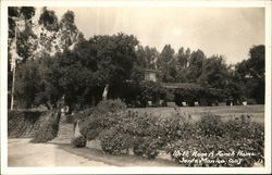 Will Rogers' Ranch Home Postcard