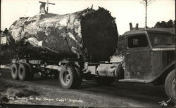 Log Hauling On The Oregon Coast Highway