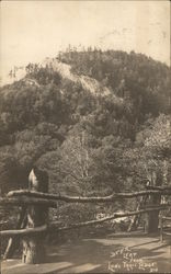 Deer Leap From Lone Trail Lodge Postcard