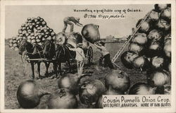 Cousin Purnell's Onion Crop, Van Buren, Arkansas, Home of Bob Burns