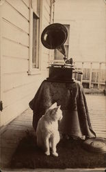 Teddy the Cat with Gramophone & Records