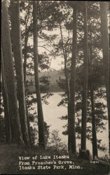 View of Lake Itaska from Preacher's Grove, Itasca State Park