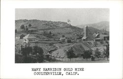Mary Harrison Gold Mine